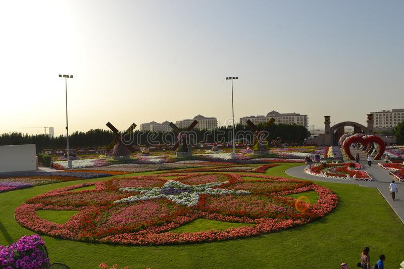 The Miracle Garden, Dubai royalty free stock images