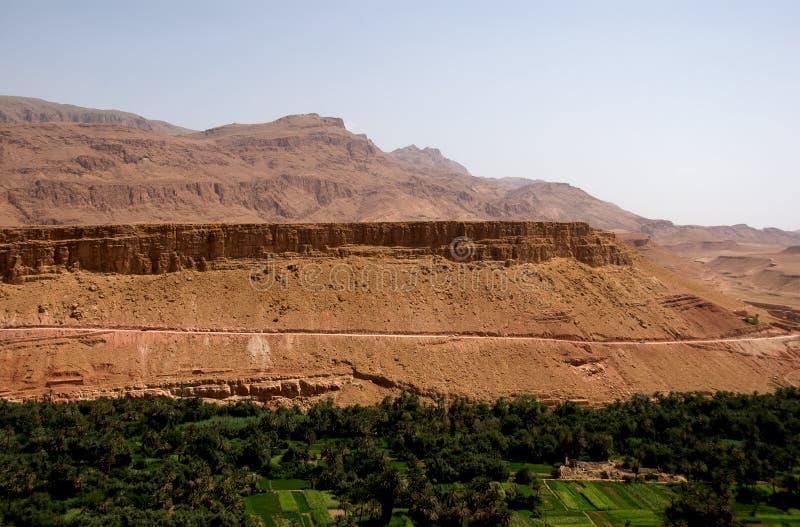 Oasis en la frontera de Sáhara fotografía de archivo libre de regalías