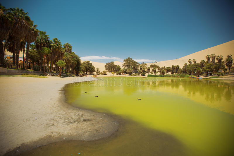 Oasis of Huacachina in the desert of Ica stock image