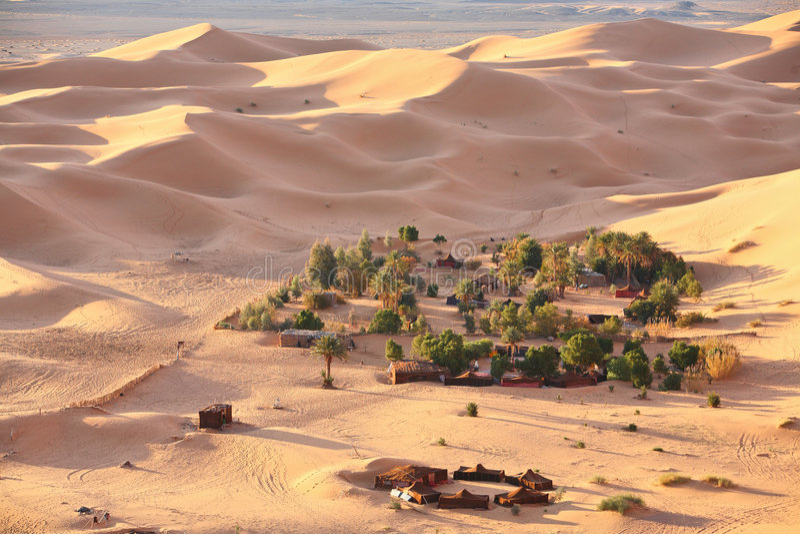 Download Oasis in Sahara desert stock image. Image of survival - 7682577