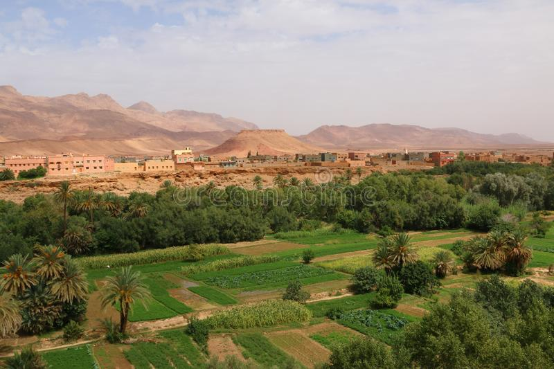 Oasis town of Tinghir in Morocco stock images