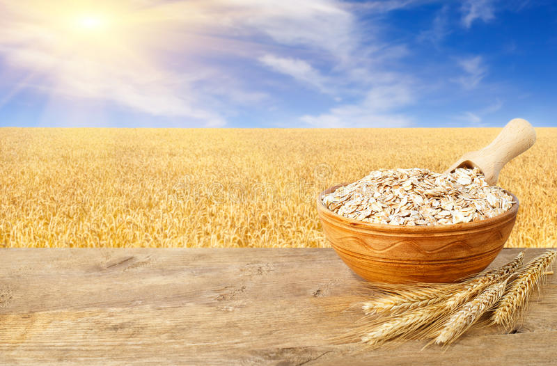 Oat flakes in bowl on nature background royalty free stock image