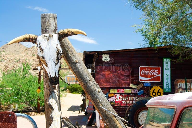 OATMAN O ARIZONA, EUA - 7 DE AGOSTO 2009: Crânio do búfalo que pendura em um polo na frente da loja histórica abandonada foto de stock royalty free