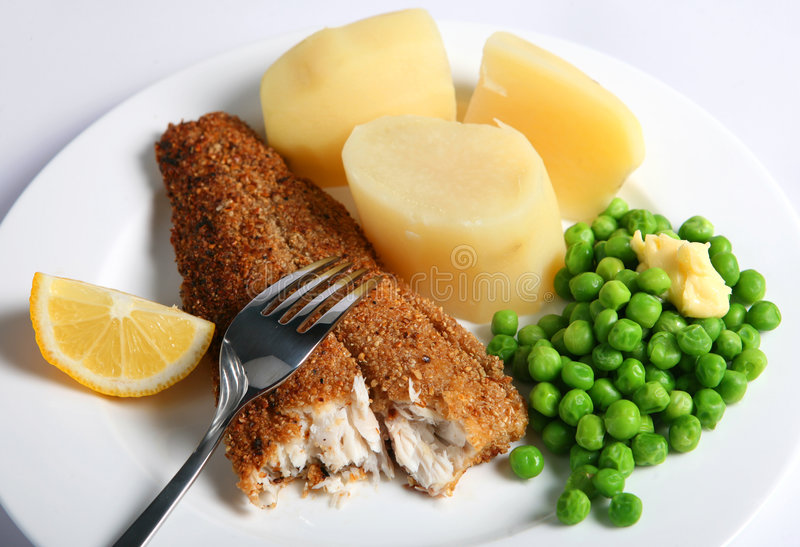 oatmeal γεύματος σκουμπριών στοκ φωτογραφία με δικαίωμα ελεύθερης χρήσης