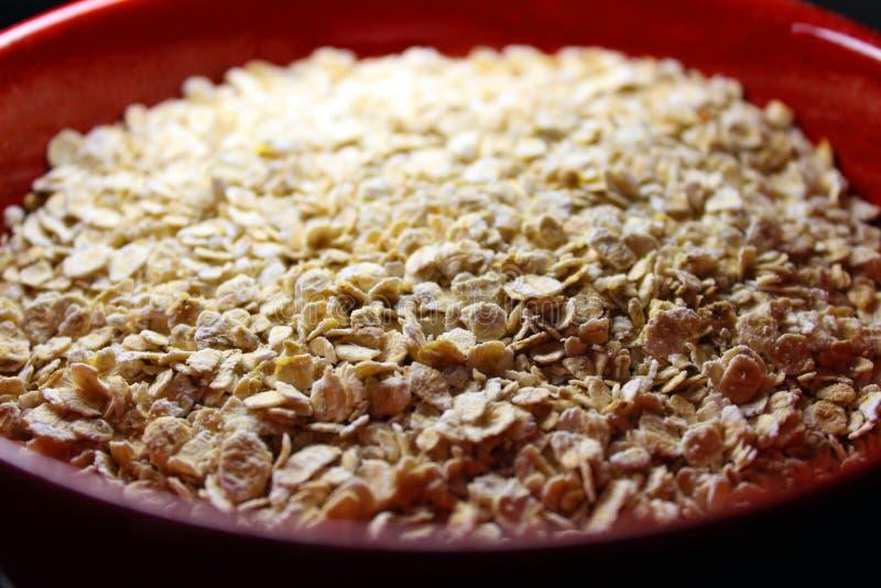 Oatmeal κινηματογράφηση σε πρώτο πλάνο στοκ εικόνες