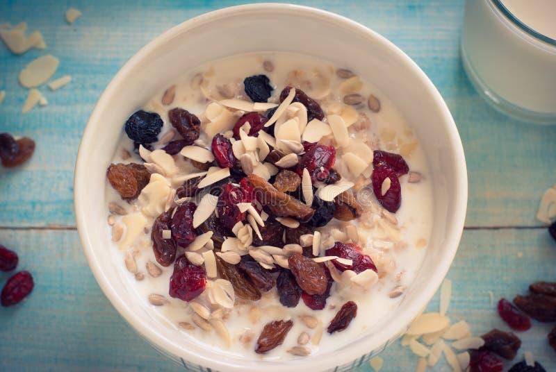 Oatmeal με ξηρό - φρούτα στοκ εικόνες με δικαίωμα ελεύθερης χρήσης