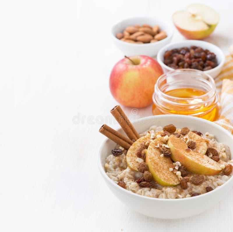 Oatmeal με τα μήλα, τις σταφίδες, την κανέλα και τα συστατικά στο λευκό στοκ εικόνες