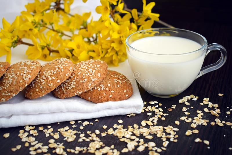 Oatmeal cookies with a cup of milk close-up on a background of yellow flowers. royalty free stock images