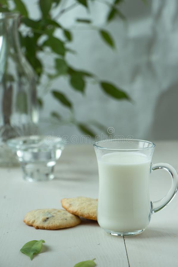 Two Oatmeal cookies with small glass of milk at wooden background, light and white photography in a rustic style. Oatmeal cookies with a glass of milk, light and royalty free stock photo