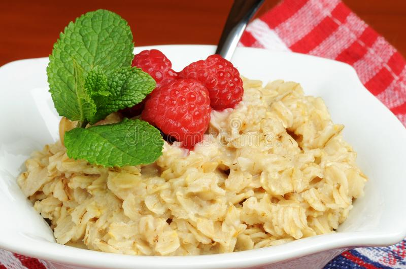 Oatmeal and Fruit stock image