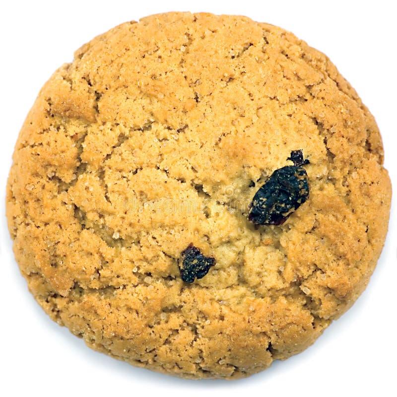 Download Oatmeal Raisin Cookie Macro Closeup Isolated Stock Image - Image: 13054773