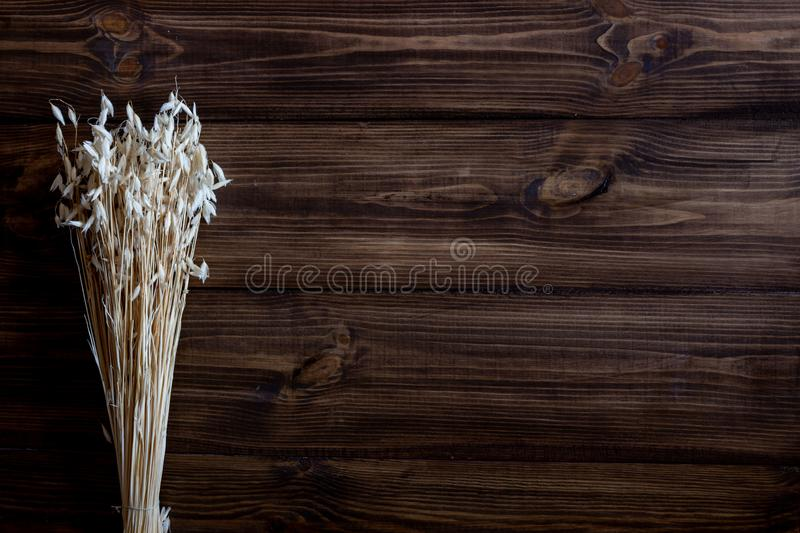 Oats on a wooden background. Top view royalty free stock photography