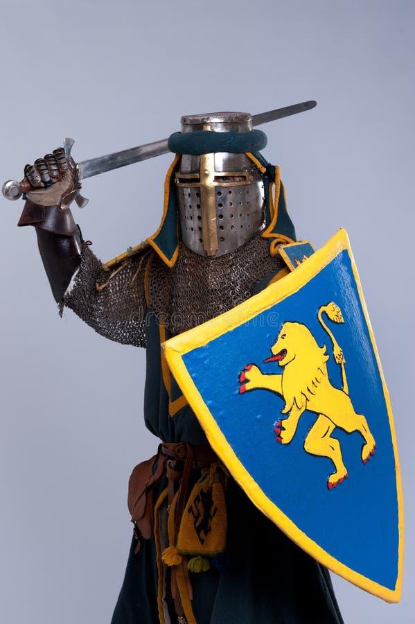 Oavkortad armor för medeltida riddare royaltyfria bilder