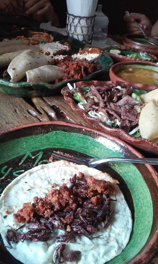 Oaxaca food. Different prehispanic food from Oaxaca Mexico can see a grasshopper taco put in a handmade tortilla made by corn in other plate can see tasajo with stock photography
