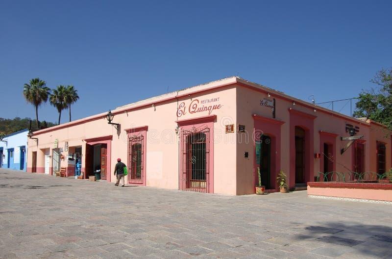 Oaxaca gata arkivbilder