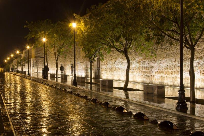 Oaxaca na noite fotografia de stock royalty free