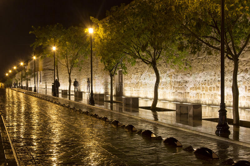 A street in Oaxaca City at night. Street illuminated at night in Oaxaca City while rain is falling royalty free stock photography