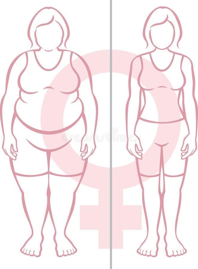 Obésité et femmes illustration stock