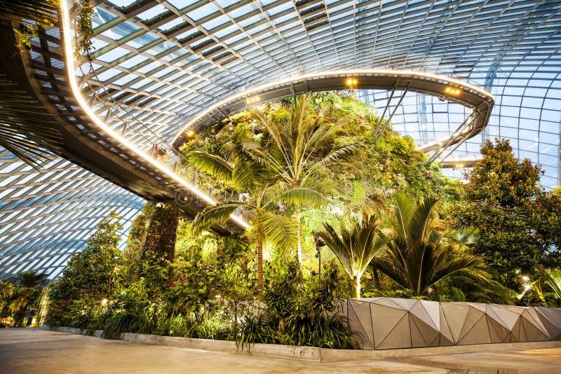 Obłoczny Lasowy wnętrze, ogródy zatoką, Singapur zdjęcie royalty free