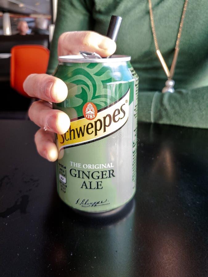Oban Skottland - Oktober 07, 2018: Damen som tycker om hennes Schweppes Ginger Ale kan royaltyfri fotografi