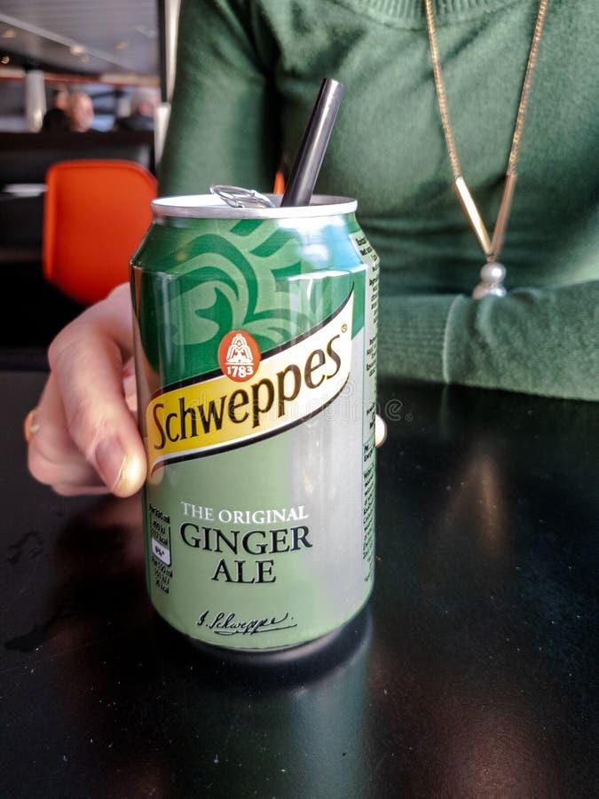 Oban Skottland - Oktober 07, 2018: Damen som tycker om hennes Schweppes Ginger Ale kan royaltyfri foto