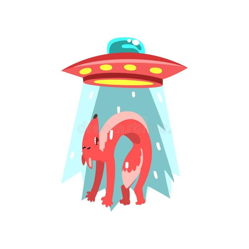 Obcy UFO statek kosmiczny bierze oddalonego czerwonego lisa, latający spodeczek bierze zwierzęcia używać lekkiego promień wektoro royalty ilustracja