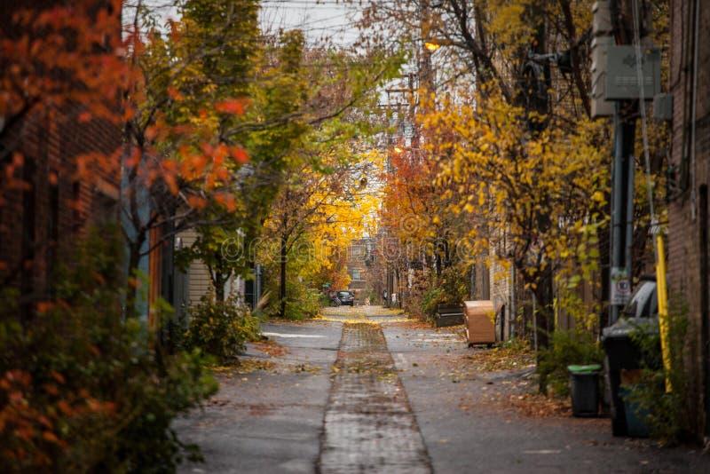 Obdrapana typowa północnoamerykańska mieszkaniowa ulica w jesieni w Montreal, Quebec, podczas deszczowego dnia, czerwieni i kolor obraz royalty free