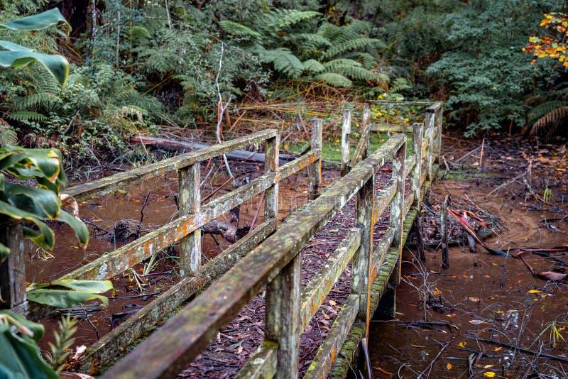 Obdrapany most w Alfred Nicholas ogródach fotografia stock