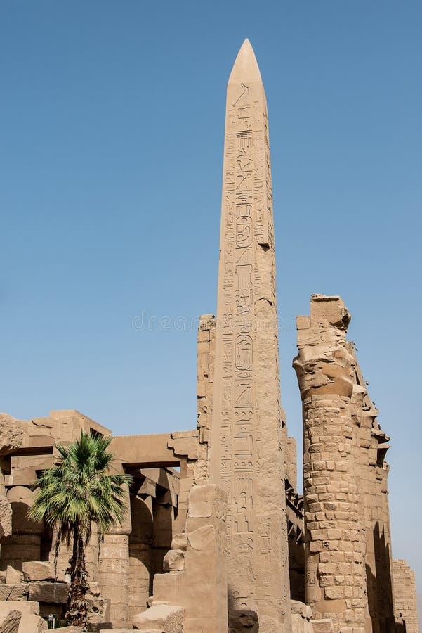 Obelisk Thutmose Przy ?wi?tyni? akademie kr?lewskie, Karnak, Luxor Egipt zdjęcia royalty free