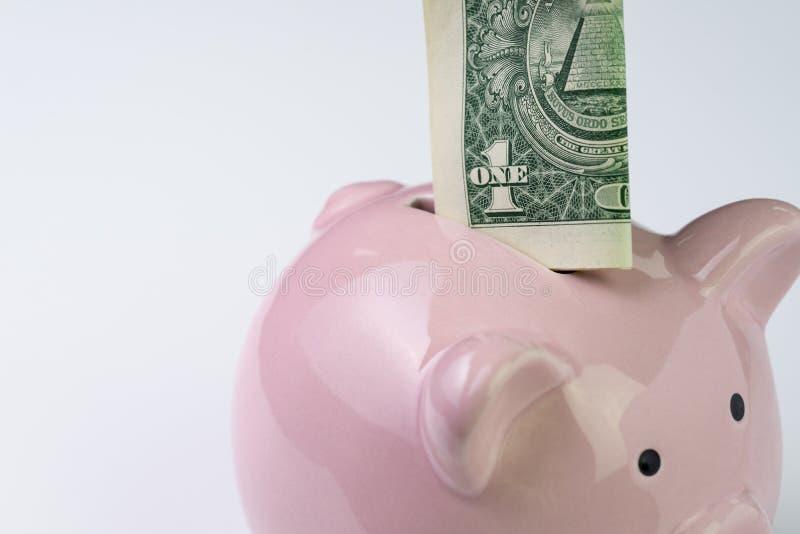 Oben geschlossen von einer US-Dollar Banknote setzen Sie sich auf rosa piggy Verbot stockbild