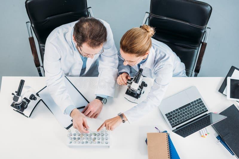 obenliegende Ansicht von wissenschaftlichen Forschern in den weißen Mänteln, die Flaschen mit Reagenzien auf Arbeitsplatz betrach stockbild