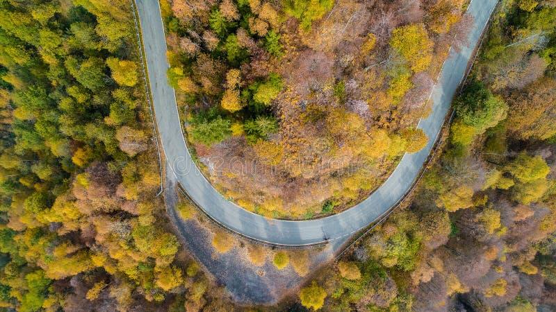 Obenliegende von der Luftdraufsicht über Haarnadeldrehungs-Straßenbiegung in buntem Landschaftsherbst forestFall orange, grün, ge stockbilder