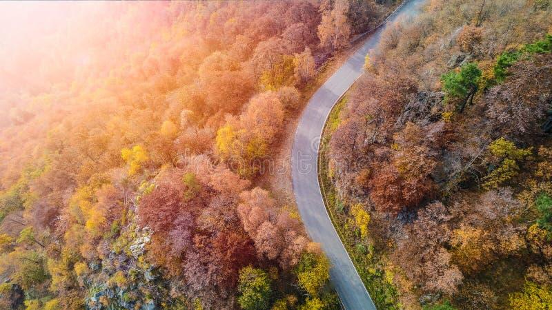 Obenliegende von der Luftdraufsicht über Kurvenstraßenbiegung in buntem Landschaftsherbst forestFall orange, grüner, gelber, rote lizenzfreie stockbilder