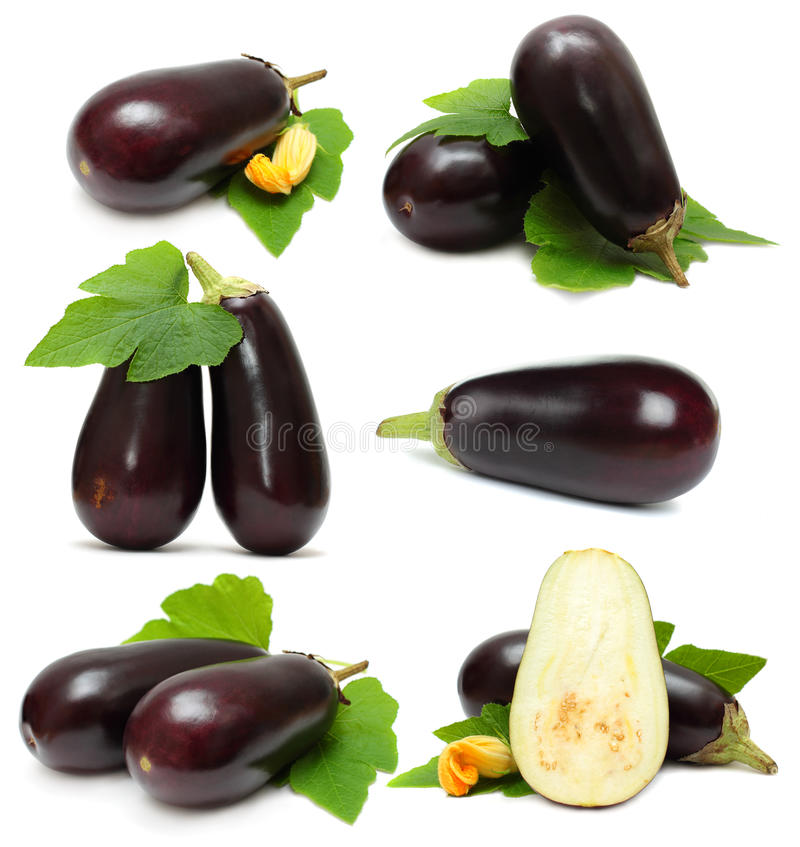 oberżyny warzywo zdjęcie stock