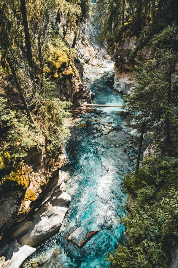 Oberleder fällt Johnston Canyon Waterfall, Banff Nationalpark Kanada Alberta stockbilder