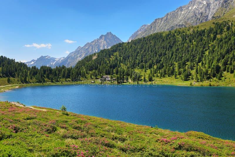 Obersee Lake i Stalle Pass, gränsen mellan Italien och Österrike arkivbild