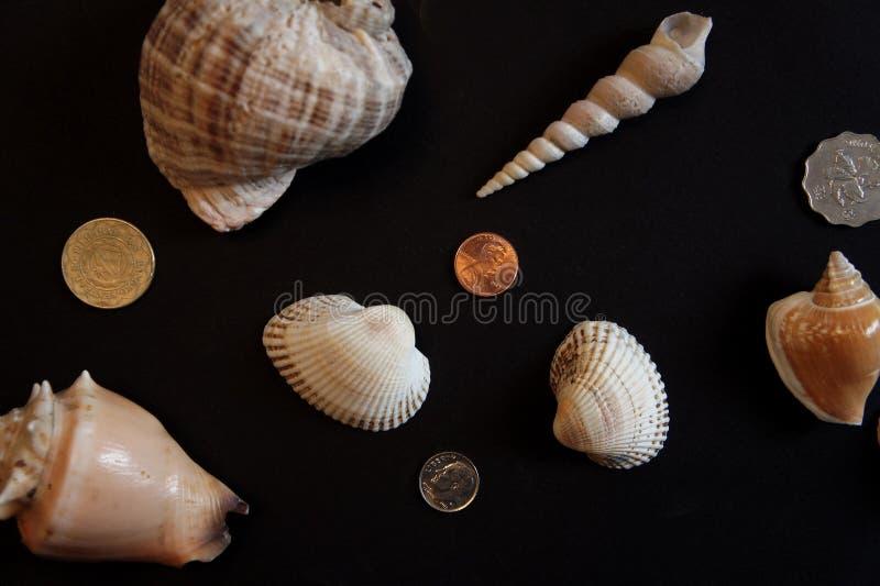 Oberteile und Münzen stockfotografie