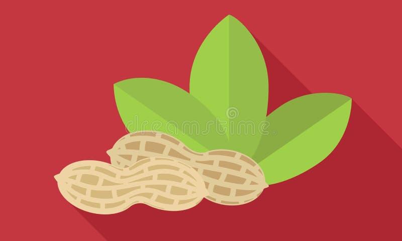 Oberteilikone der ganzen Erdnuss, flache Art lizenzfreie abbildung
