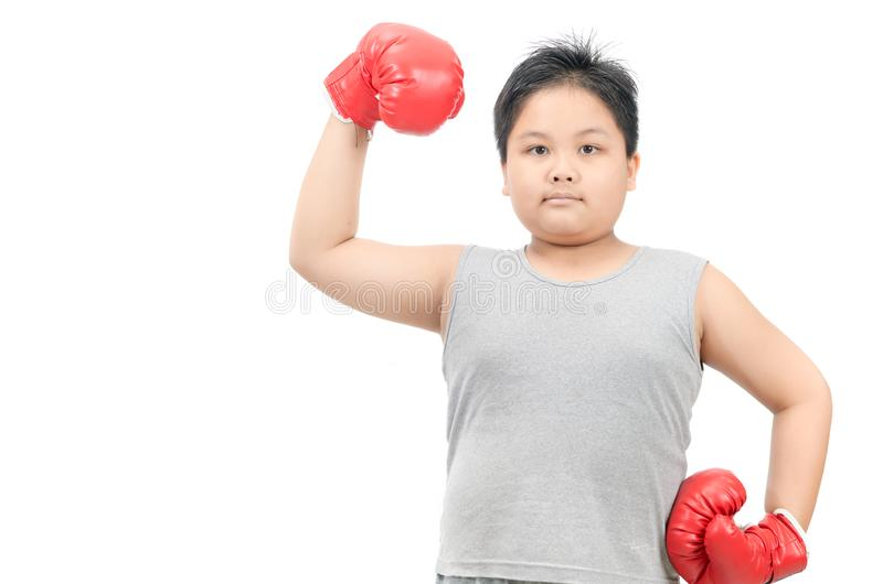 Obese boy show muscle with red boxing gloves isolated. On white background, exercise and healthy concept royalty free stock photos