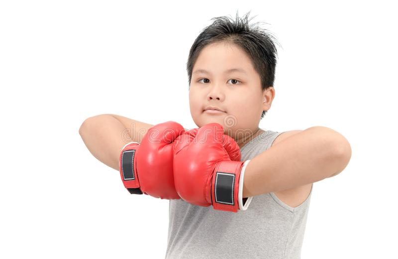 Obese boy show muscle with red boxing gloves. Isolated on white background, exercise and healthy concept royalty free stock photos