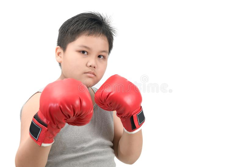 Obese fat boy kid fighting with red boxing gloves. On white background, exercise and healthy concept royalty free stock photo