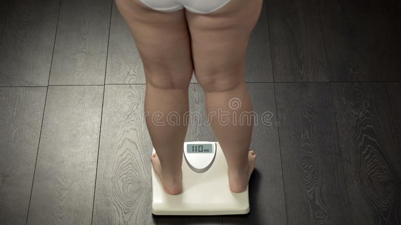 Obese female standing on bathroom scales to check body weight, fat, rear view. Stock photo stock photography