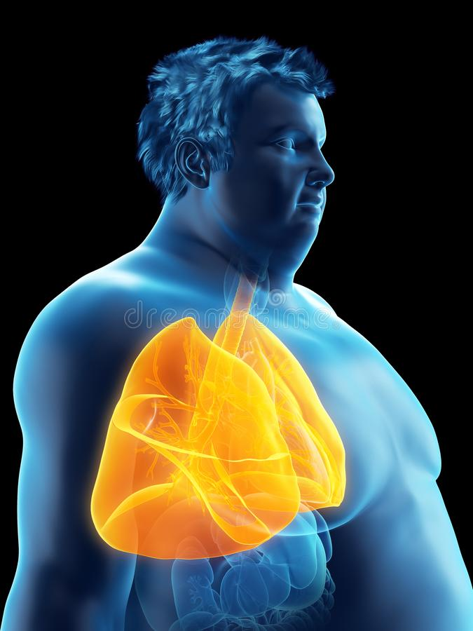 An obese mans lungs. 3d rendered medically accurate illustration of an obese mans lungs royalty free illustration