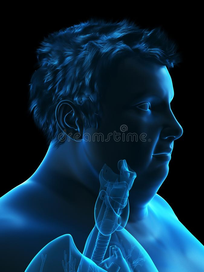 An obese mans throat anatomy. 3d rendered medically accurate illustration of an obese mans throat anatomy vector illustration