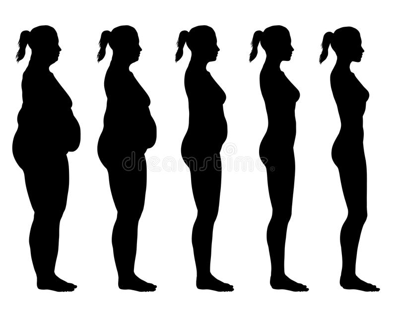 Obese to Skinny Female Silhouette Side View stock illustration