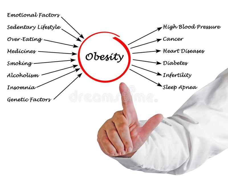 Obesità - cause ed effetti immagine stock