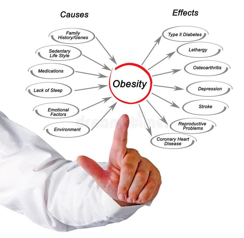 Obesità: cause ed effetti fotografie stock