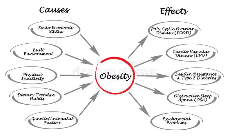 Obesità: cause ed effetti illustrazione vettoriale