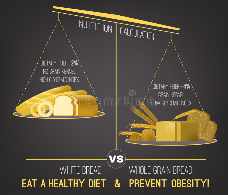 Obesity Infographics vector vector illustration