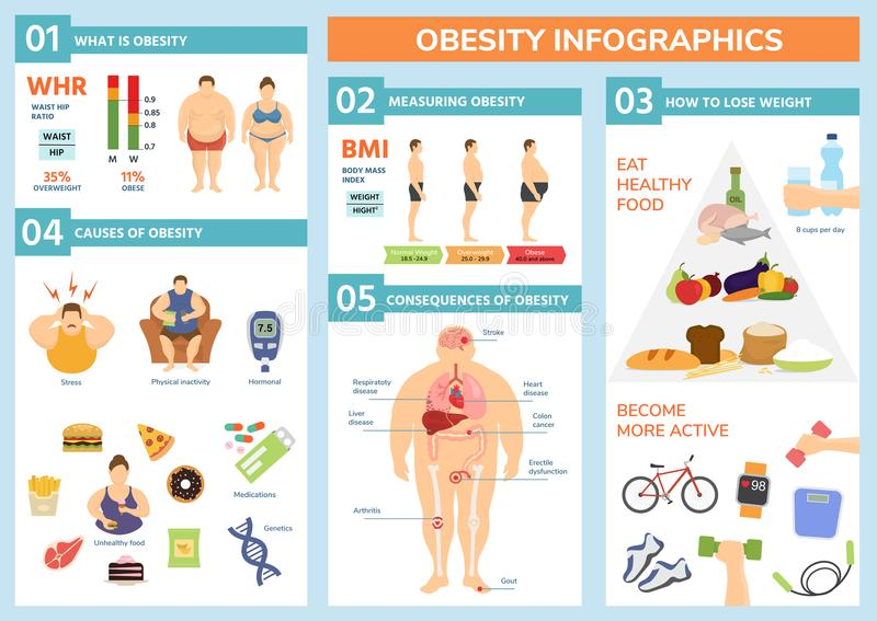 Obesity weight loss and fat people health problems infographic healthy elements exercise for good health with food. Vector illustration. Wellness body vector illustration